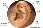 日神不動産〜Ear's〜