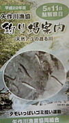 矢作川☆鮎釣り