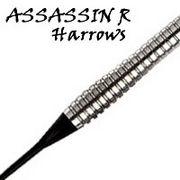 ASSASSIN R*LOVE