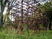 ジャングル事務所