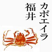 カポエイラ 福井