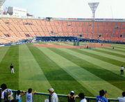 周りに横浜ファンがいない