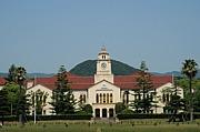 2012年度関西学院大文学部新入生