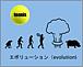 熊本★エボリューションテニス