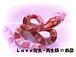Love爬虫・両性類 in 四国