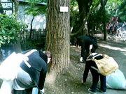 ☆武蔵野大学 ボ部☆