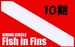 Fish in Fins 10期生!