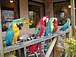 京都の鳥バカ集まれ!