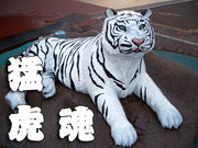 猛虎会@東京の関西人