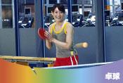 ココカラ本厚木Table<Tennis>