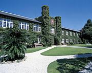 2012年度 立教大学新入生