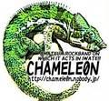 chamele0n