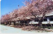 県立鴻巣高等学校(鴻巣高校)
