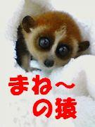 =100万円の起業= まね〜の猿!