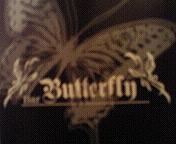 Bar Butterfly