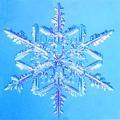 snow*雪と雪の結晶*