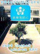浜松大平台高等学校┃全日制