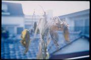 写真部クロニクルー1997〜∞
