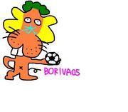 BORIVA05