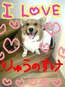 ♡I LOVE 龍之介♡