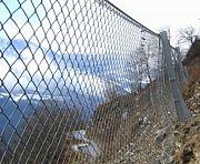 網、柵好き