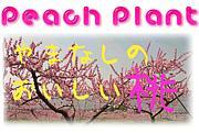 ♪ Peach Plant ♪