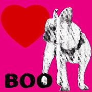 BOOxBOO !フレブルモデル