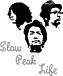 Slow Peak Life