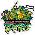 HOSEI TURTLES
