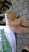☆TEDDY BEAR☆