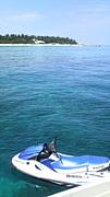 アイランドクルー&瀬底ビーチ