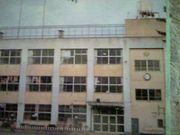 品川区立杜松小学校