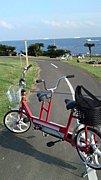 自転車で走ろう!