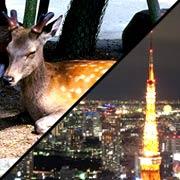 関東在住の奈良県民