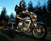 Rider's cafe  白いカラス