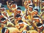 日本体育大學