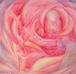 薔薇宇宙〜聖なる母に抱かれて〜
