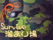 Survive溜まり場