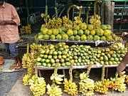 スリランカ大好き