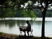 静かな生活