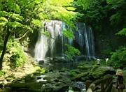 アラ50福島県の会