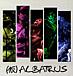 (仮)ALBATRUS