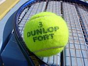 佐世保北 硬式テニス部 OB・OG