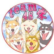 team柴48