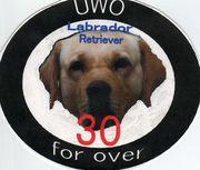 UWO for over30