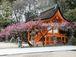 ◆京の歴史と文化と人 【京都】