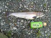 魚野川渓魚会