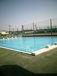 磐田西高校水泳部