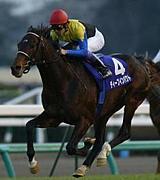 【競馬】今日の儲かる馬「金馬」