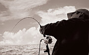 瀬戸内 家島 小豆島Fishing 釣り